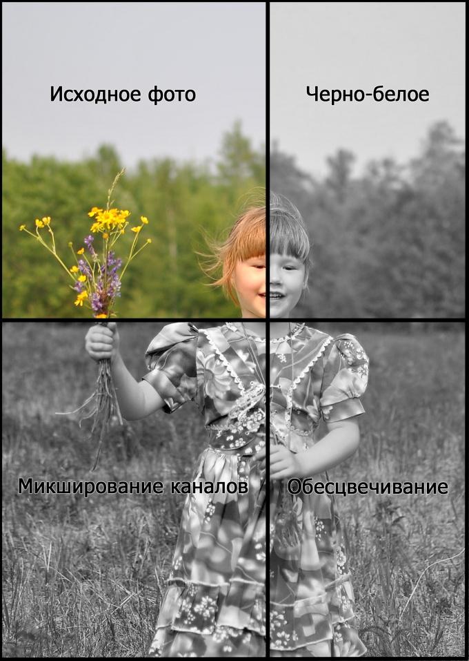 Как фотку сделать черно белой - Vdpo85.ru
