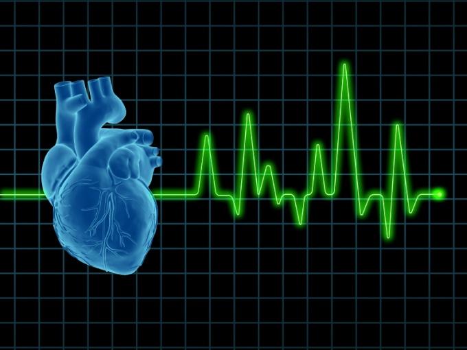 Как прочесть кардиограмму