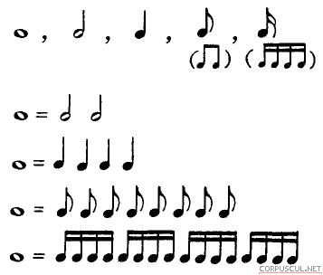 Сравнение длительностей нот