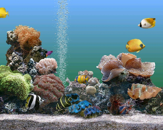 электрический сифон для аквариума своими руками