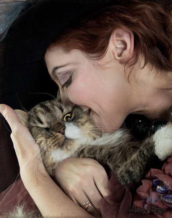 Как успокоить <strong>кошку</strong>
