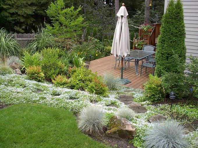 Предусмотрите место под сад, огород и цветник