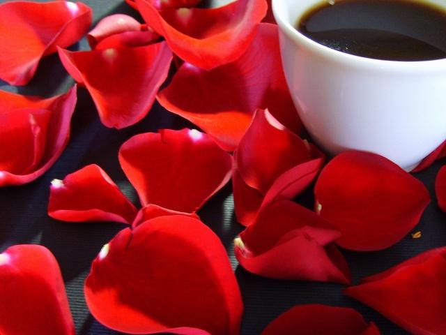 Как заваривать кофе во френч-прессе