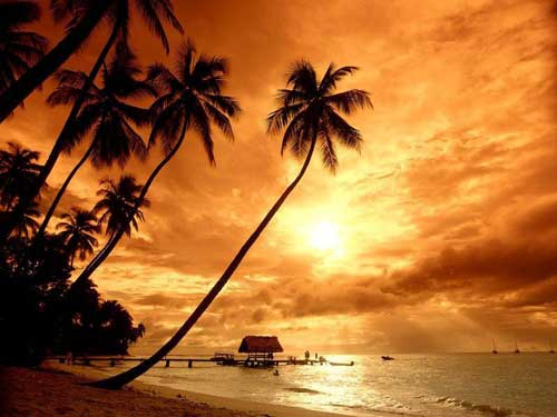 How to go to Goa