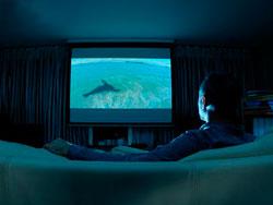 Как подобрать <strong>диагональ</strong> <b>телевизора</b>