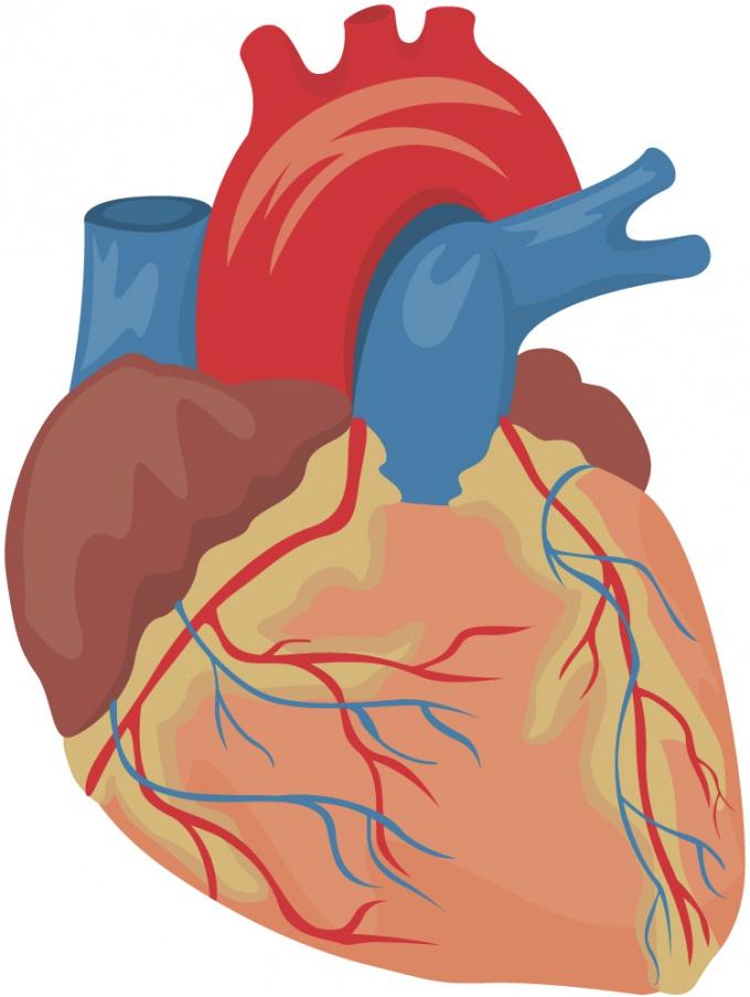 Как лечить болезни сердца