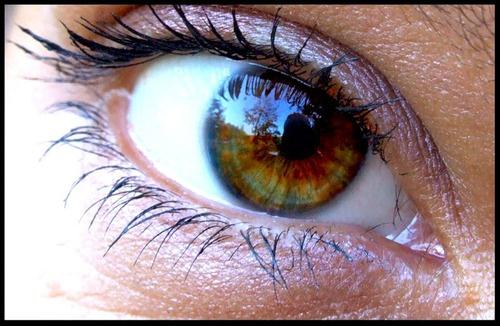 Заботьтесь о здоровье ваших глаз.