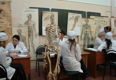 Как сдать анатомию