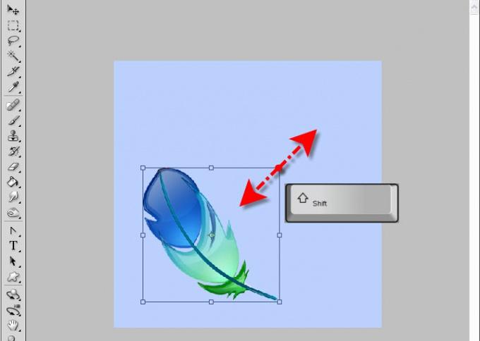 Как изменить размер <b>слоя</b>