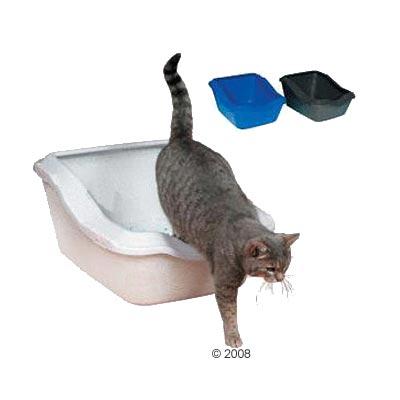 How to teach <b></b> <em>adult</em> cat <strong>WC</strong>