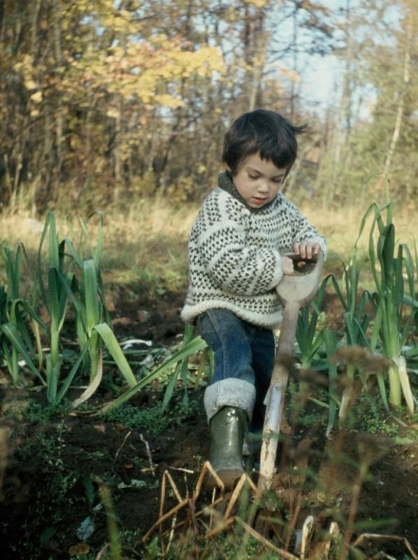 Как приучать детей к труду