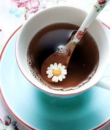 Chamomile has antimicrobial and disinfecting effect.