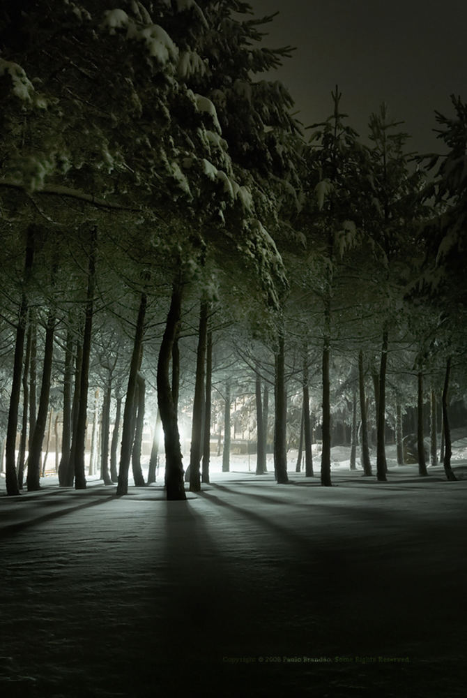 Ночной пейзаж на длинной выдрежке.