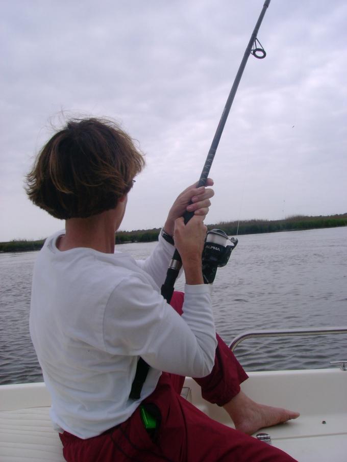 Червей для рыбалки можно вырастить на даче