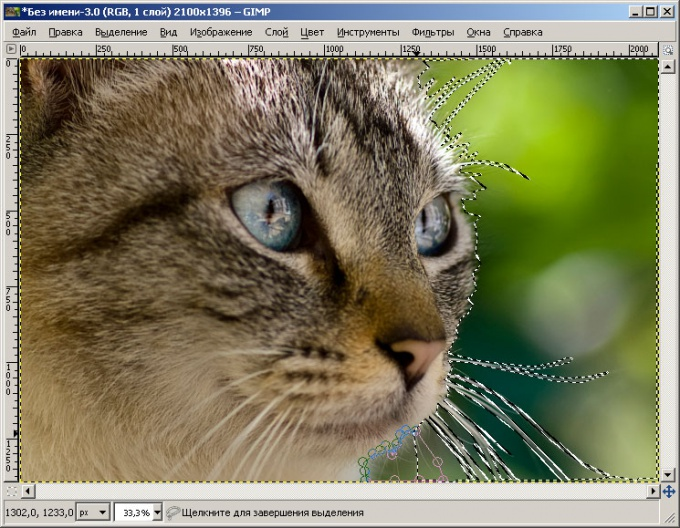 How to remove the background on <b>photos</b> without <em>photoshop</em>