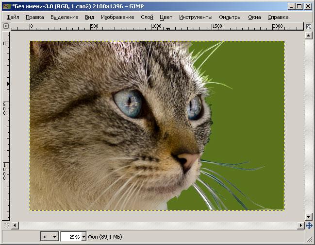Как убрать фон на <b>фотографии</b> без <em>фотошопа</em>