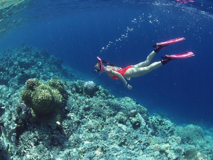 Как обучиться плавать под водой