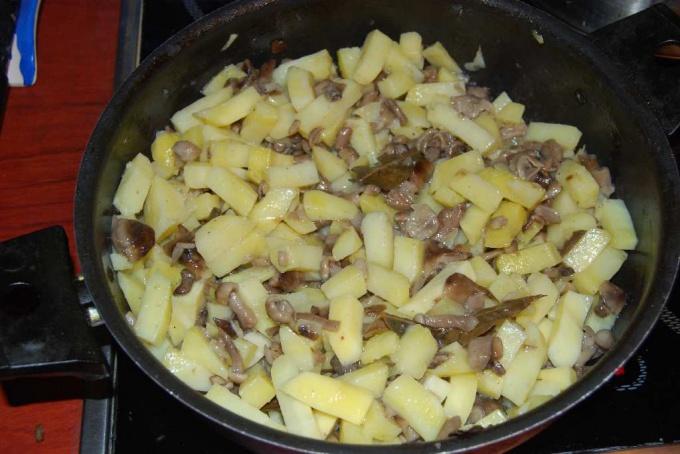 Как приготовить опята с картошкой