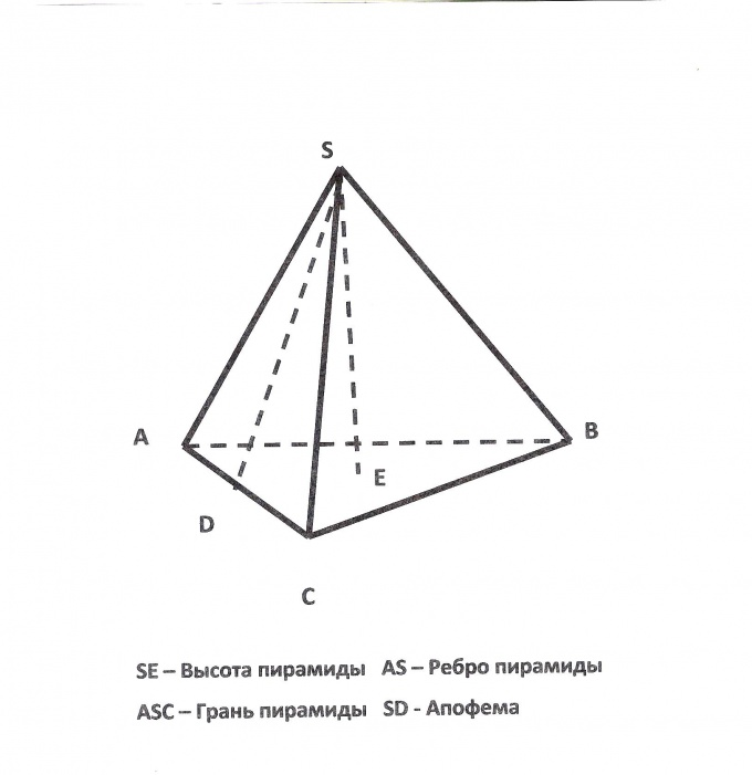 The height of the triangular pyramid perpendicular to its base