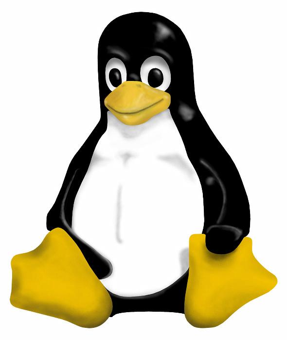Как русифицировать Linux