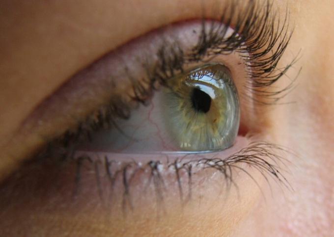 Берегите здоровье ваших глаз.