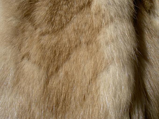 Мех норки не выходит из моды уже много десятилетий