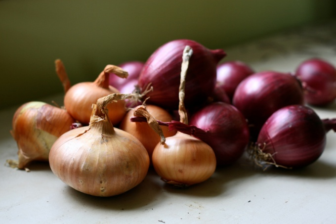 How to grow good onions