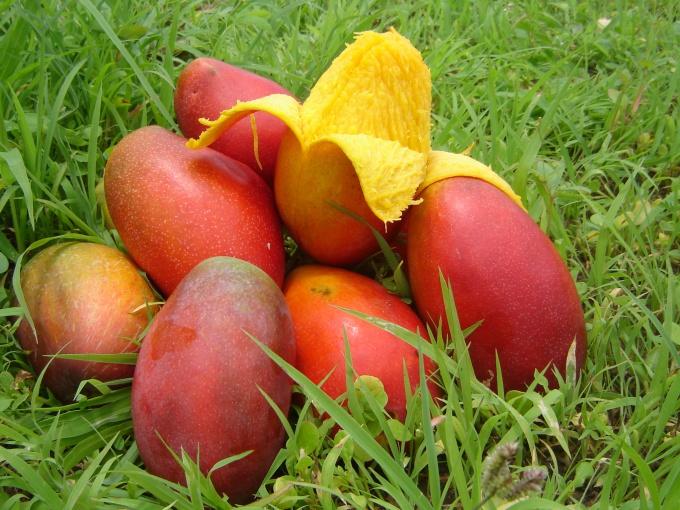 Как разделывать манго