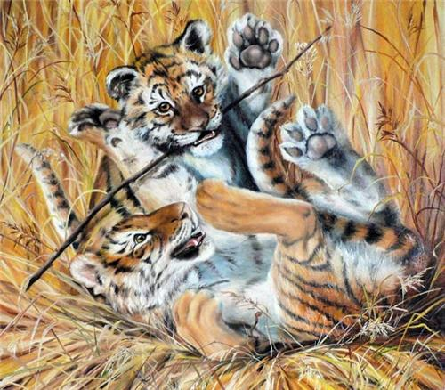 Как нарисовать тигренка