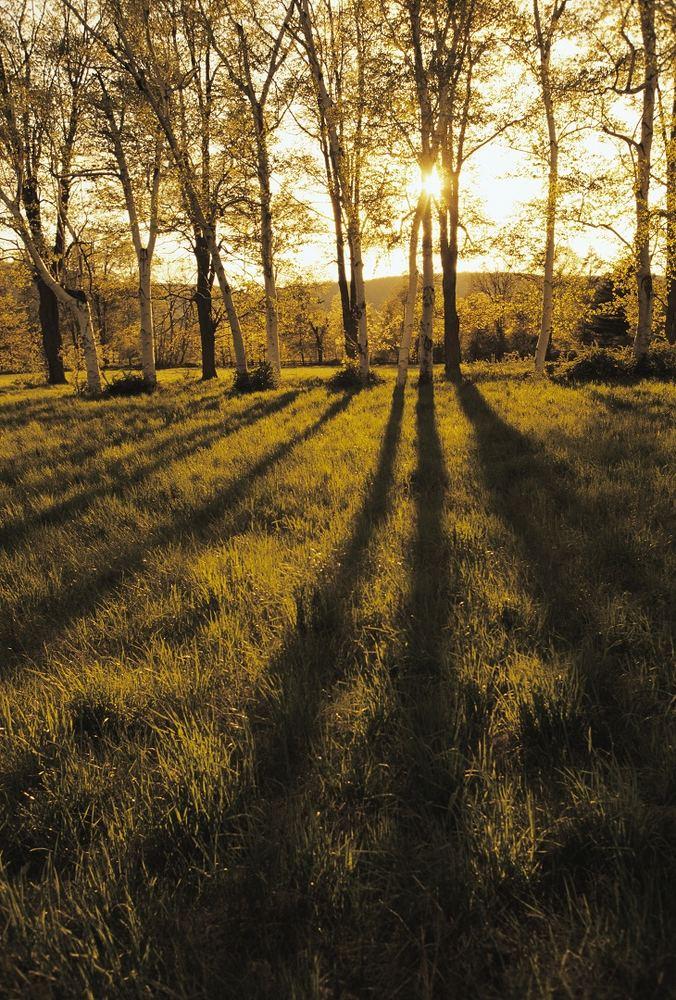 Косые лучи солнца преобразуют снимок