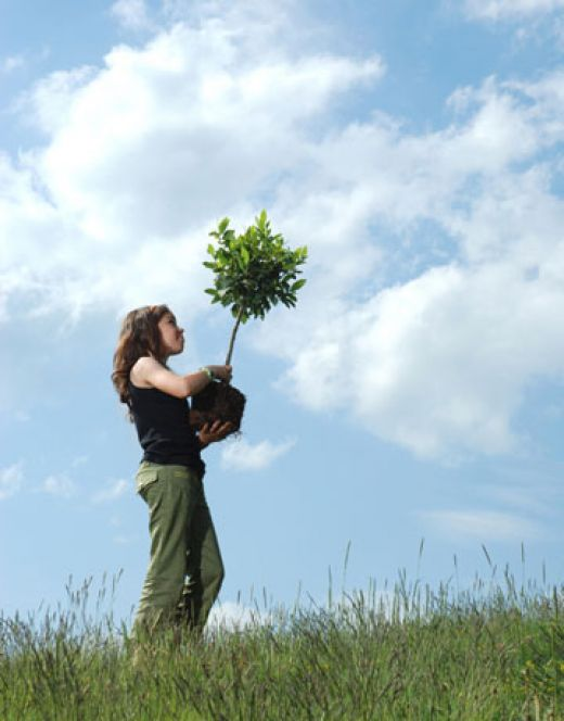Non-profit organizations can be created, for example, to protect the environment