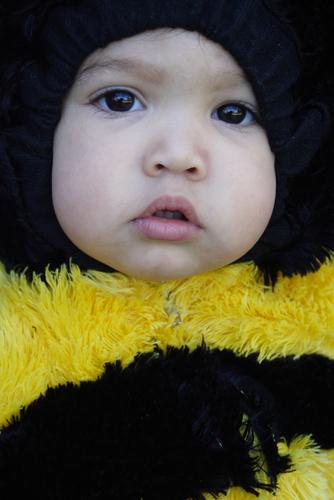 Как связать новогодний костюм пчелы