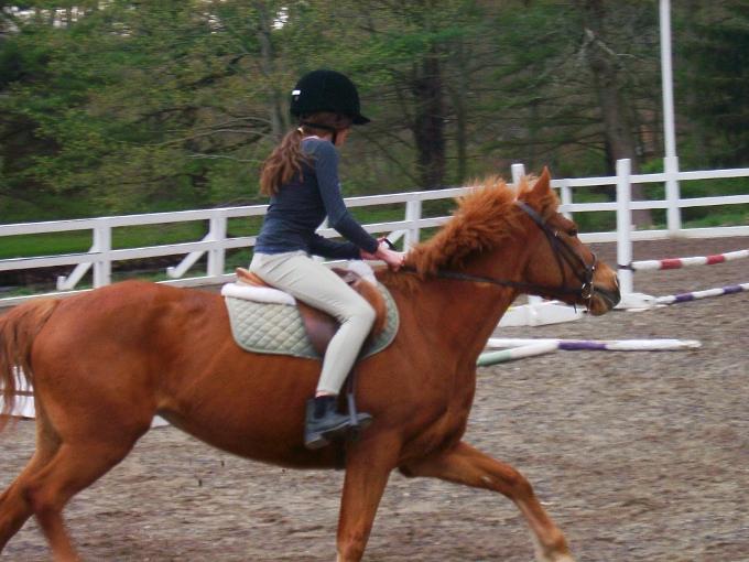 Как слезать с лошади