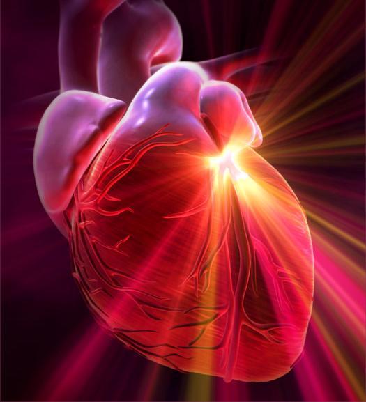 Как усовершенствовать работу сердца