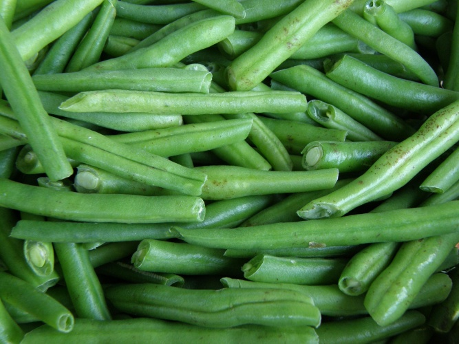How to cook dishes of green beans
