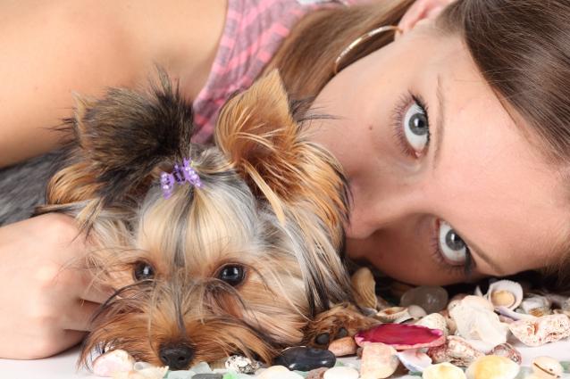 есть ли случаи обмана при получении пропавших собак обратно