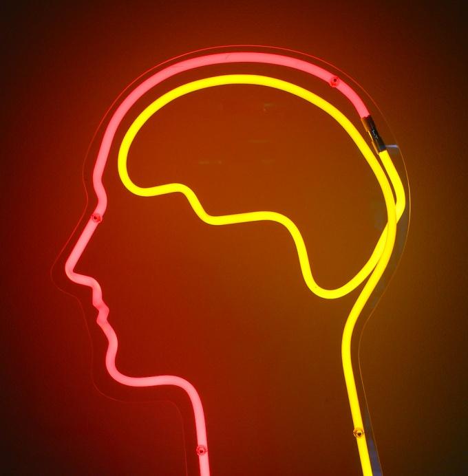 Занимая всего 3% от общей массы тела, мозг потребляет почти 20% всей энергии, получаемой с пищей