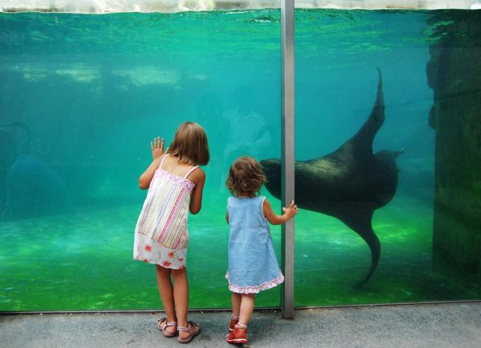 Как сделать аквариумное хозяйство на 700 литров
