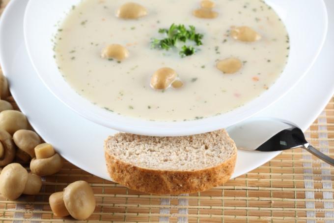 Крем-суп с шампиньонами - изысканное и простое в приготовлении блюдо