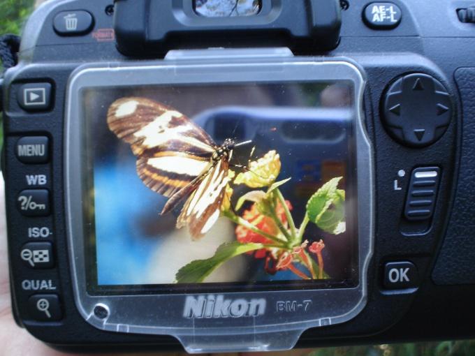 Фотографии - частички памяти