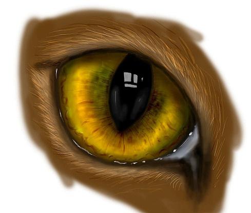 Как нарисовать кошачьи глаза