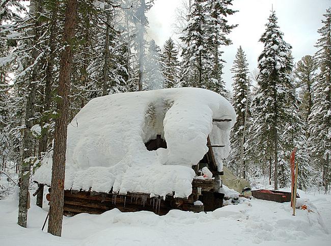 Как построить зимовье
