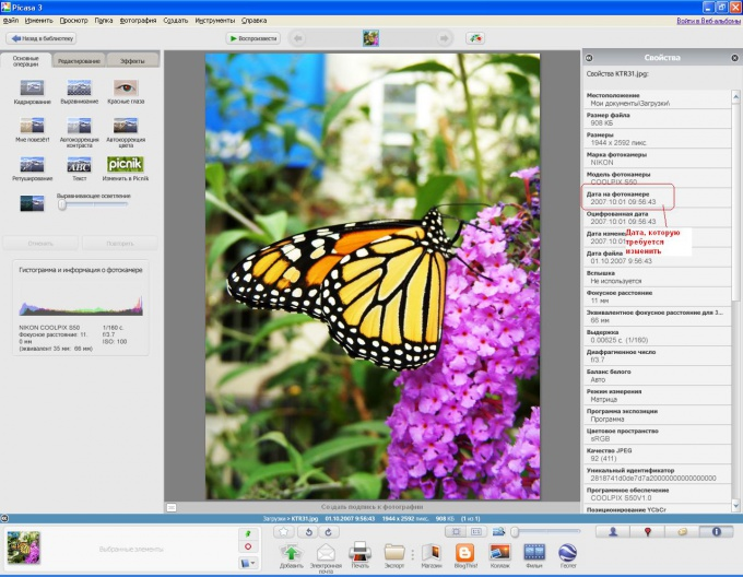 Picasa displays the EXIF header