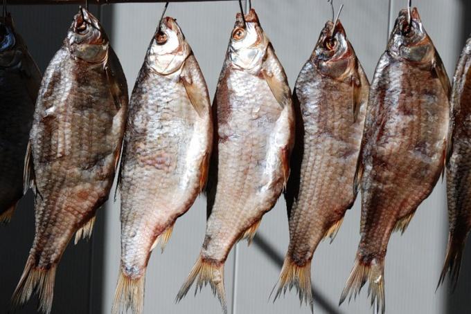 Правильно сушить рыбу - целое искусство.
