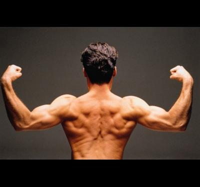 Как накачать мышцы за короткое время