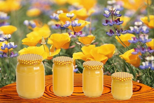 Как узнать, настоящий ли мед