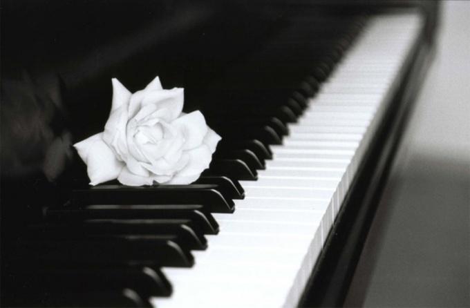 Как выучить ноты на пианино