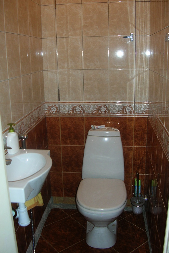 How to eliminate odor in the toilet