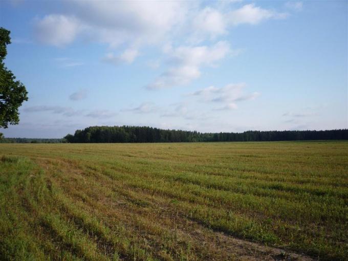 Как оценить стоимость земли