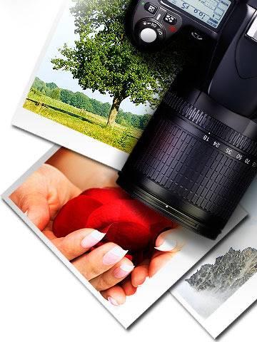 Как заработать в фотобанках